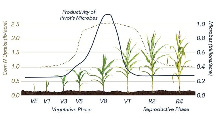 Nitrogen Utilization Chart