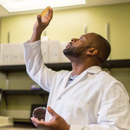 Pivot Bio Research