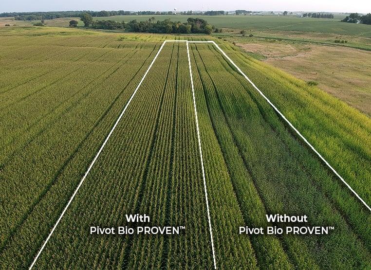 Pivot Bio PROVEN™ Field Plot